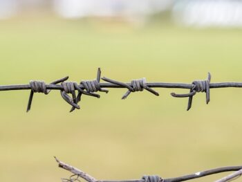 When was the Barbed Wire Invented