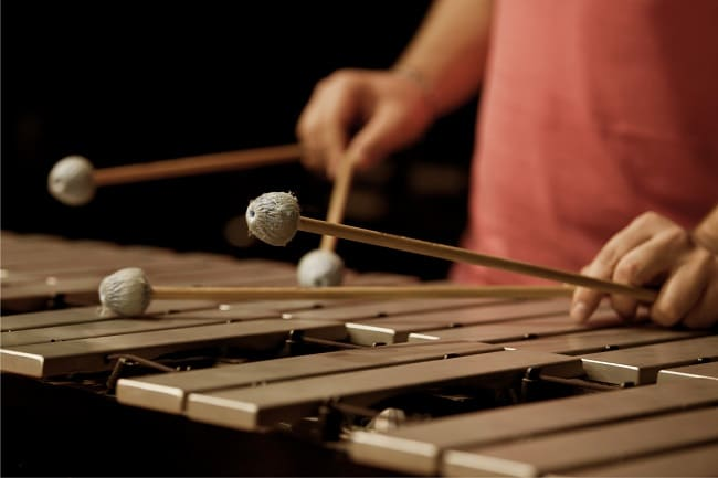 Xylophone brown